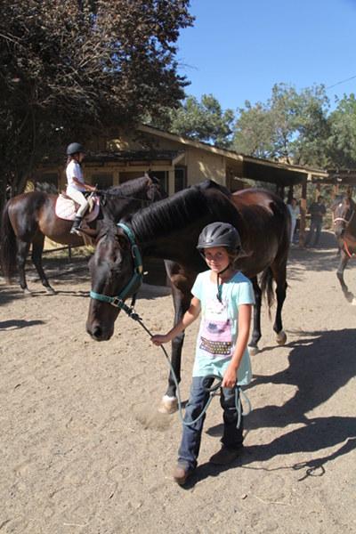 Child guiding a horse.