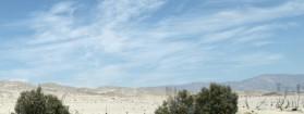 Roadtrip: Coachella Valley